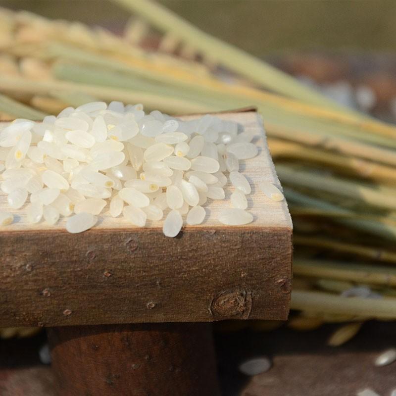 自然农法 双有机五常鲜胚芽香米·8袋