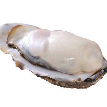 大连石城岛鲜活生蚝 海蛎子牡蛎 5斤(16-20只)礼盒装