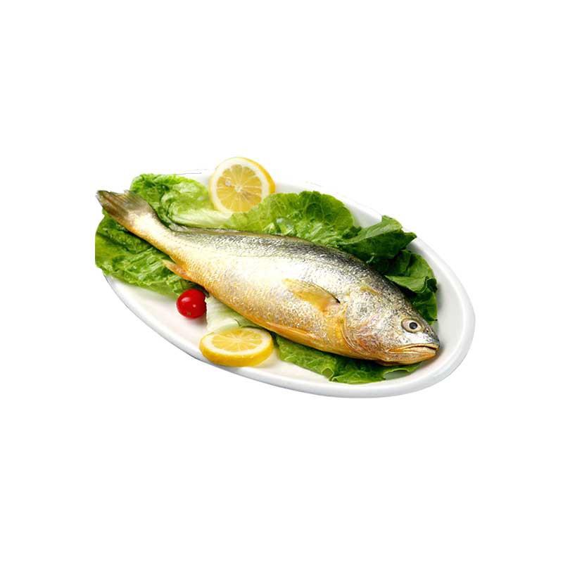 大洋世家 冰冻大黄鱼·700g*1袋
