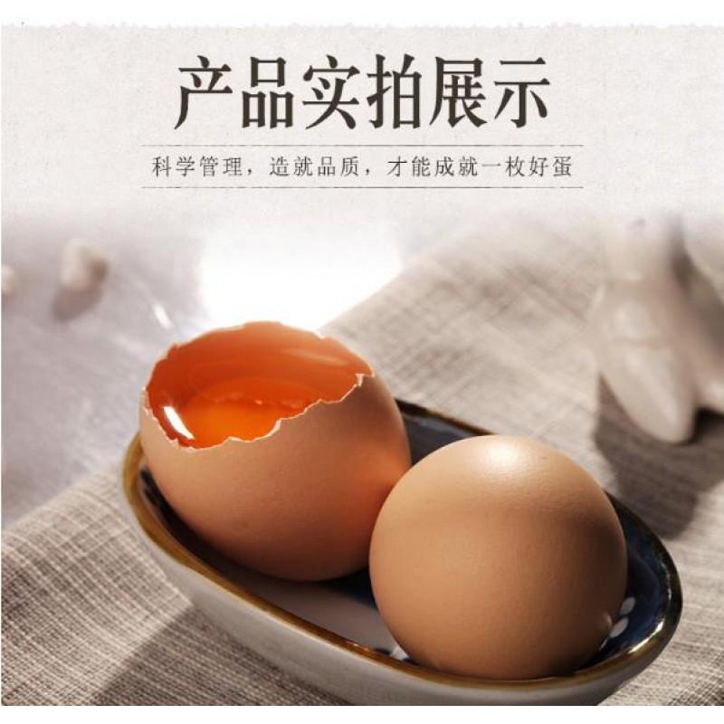 正宗农家宁夏枸杞散养土鸡蛋60粒家庭装