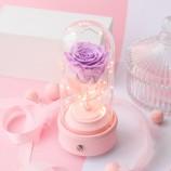 进口玫瑰紫色