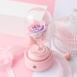 进口玫瑰粉紫渐变