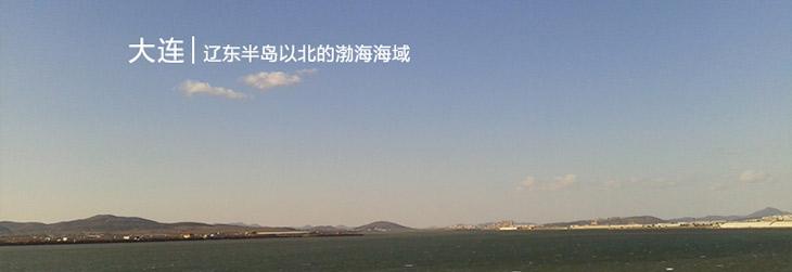 良岛 即食海参·50g*99头