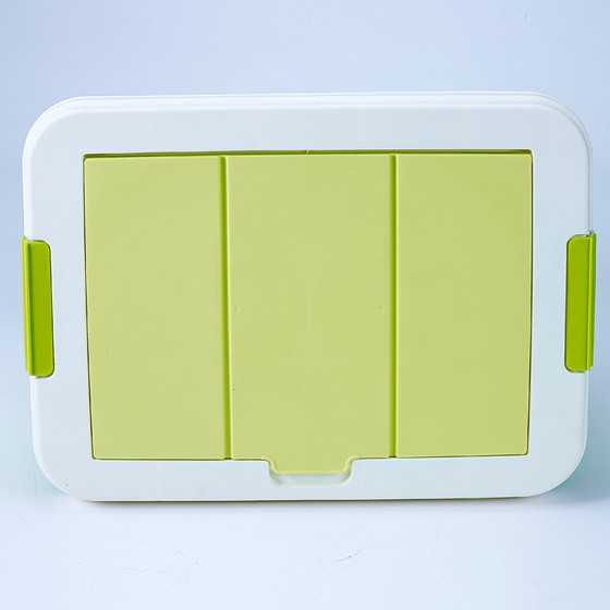 茶花创意翻盖隔层整理箱 绿色