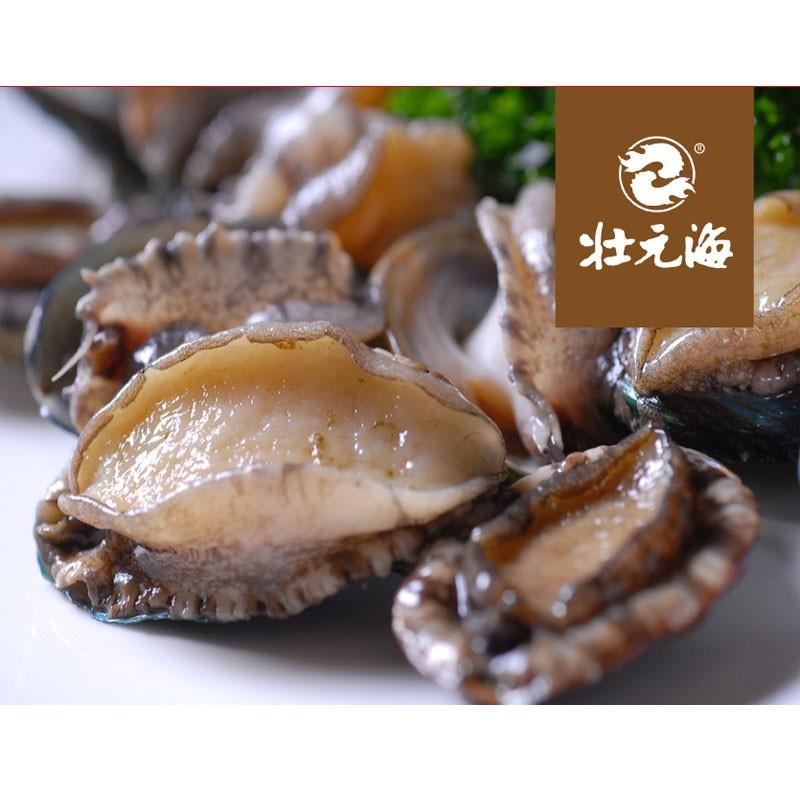 壮元海有机活冻鲍鱼品鲜组