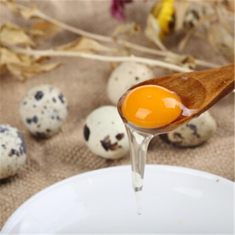 神丹  新鲜生鹌鹑蛋 100枚